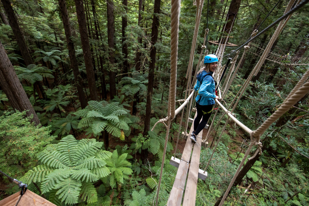 The ultimate tree top adventure in Rotorua